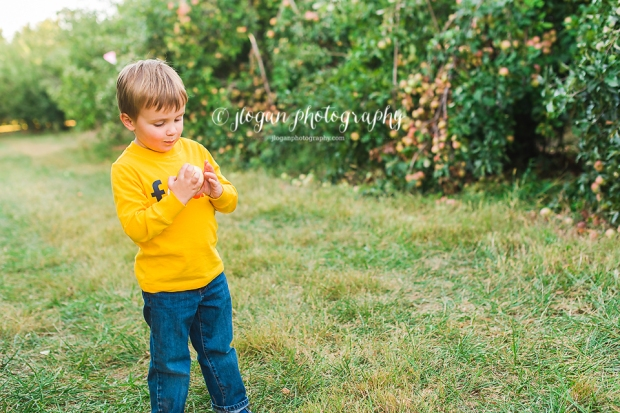 apple-33 copy